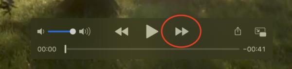 QuickTime Playerの早送りボタンの画像